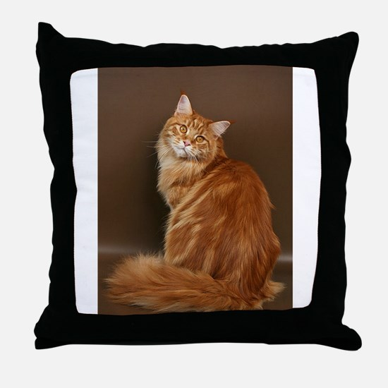 Yes - I know Im Pretty Throw Pillow