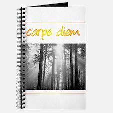 Care Diem Seize the day Journal