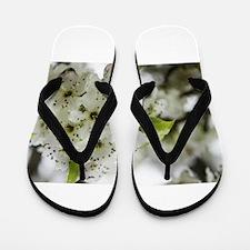 Speckled Sakura Flip Flops
