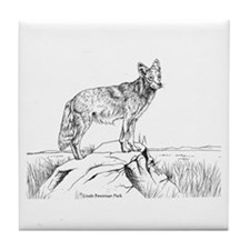 Coyote Ink Drawing Tile Coaster