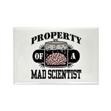 Property of a Mad Scientist Rectangle Magnet