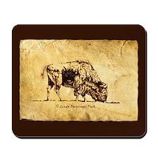 Buffalo sepia Ink Drawing Mousepad