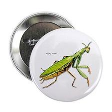 Praying Mantis Insect Button