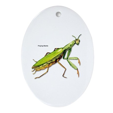 Praying Mantis Insect Oval Ornament