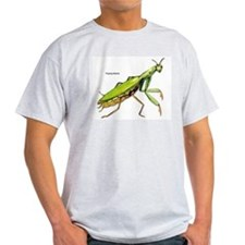 Praying Mantis Insect Ash Grey T-Shirt