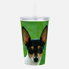 toy fox terrier Acrylic Double-wall Tumbler