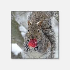 Strawberry squirrel Sticker