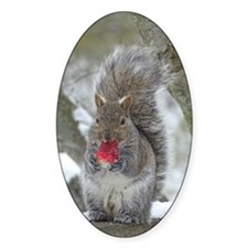 Strawberry Squirrel Decal