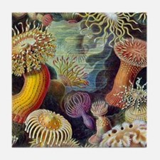 Colorful Anemones Tile Coaster