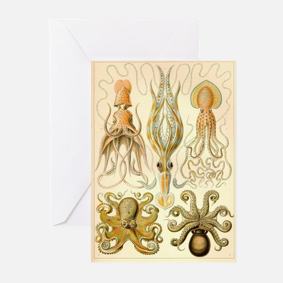 Cephalopods Greeting Cards