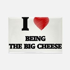 I love Being The Big Cheese Magnets