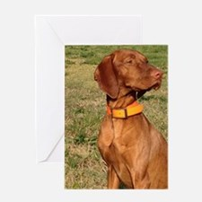 vizsla 2 Greeting Cards