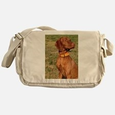 vizsla 2 Messenger Bag
