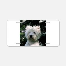 west highland white terrier Aluminum License Plate