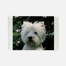 west highland white terrier Magnets