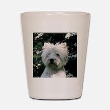 west highland white terrier Shot Glass