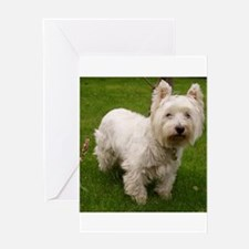 6 full westie Greeting Cards