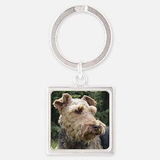 welsh terrier Keychains