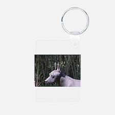 Xoloitzcuintli Keychains