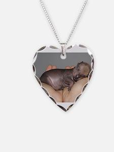 Xoloitzcuintli puppy Necklace