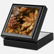 Cute Warm colors Keepsake Box