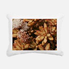 Cute Warm colors Rectangular Canvas Pillow