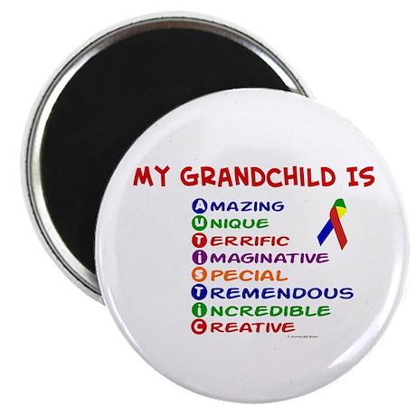 My GrandChild Is Autistic Magnet