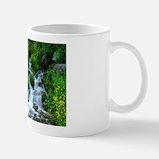 Water fall Mugs