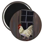 Rooster in the Window Magnets