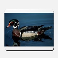 Wood Duck Mousepad