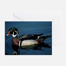 Wood Duck Greeting Cards (Pk of 10)