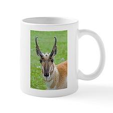 Pronghorn Face Mug