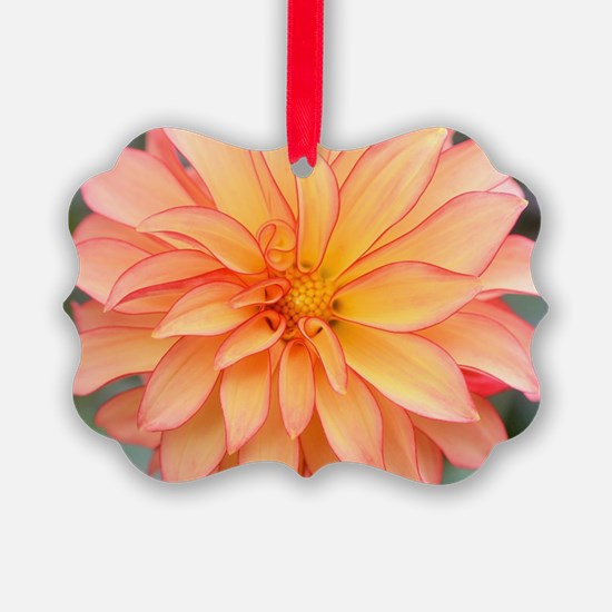 Cute Greetingcards Ornament