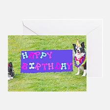 Border collie birthday Greeting Card
