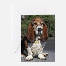 Basset Hound Greeting Card
