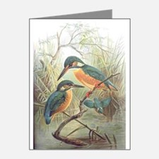 Kingfisher Note Cards (Pk of 10)