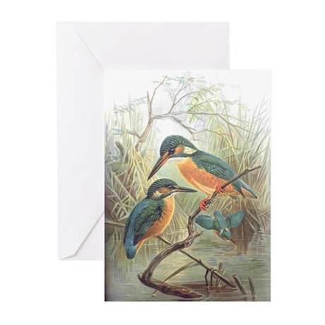 Kingfisher Greeting Cards (Pk of 20)