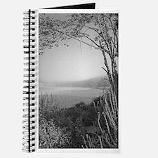 Hatch Pond - Mist B&W Journal