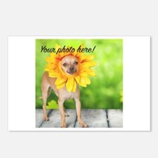 Your Pet Photo Postcards (Package of 8)