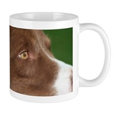 Border Collie Eye Mug