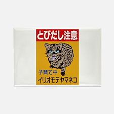Beware of the Cat, Japan Rectangle Magnet