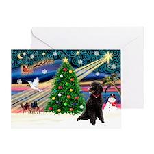 XmasStar/Poodle (ST-B) Greeting Card