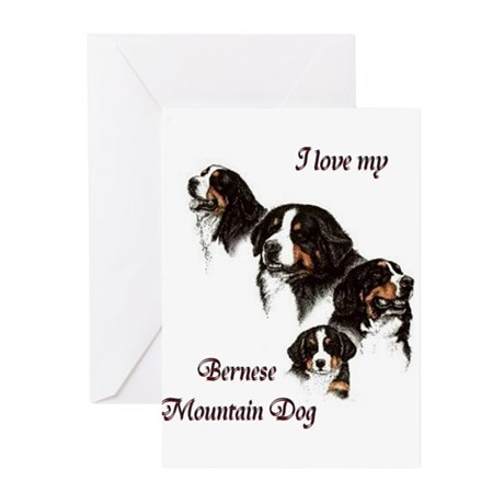 I love my Bernese Mountain Do Greeting Cards (Pack