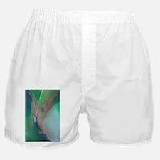 Enzoart Boxer Shorts
