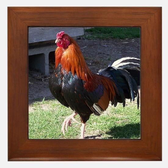 Cute Chickens Framed Tile