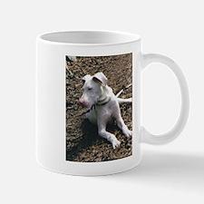 AllieHike[1] Mugs