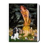 Fairies / Cavalier Mousepad
