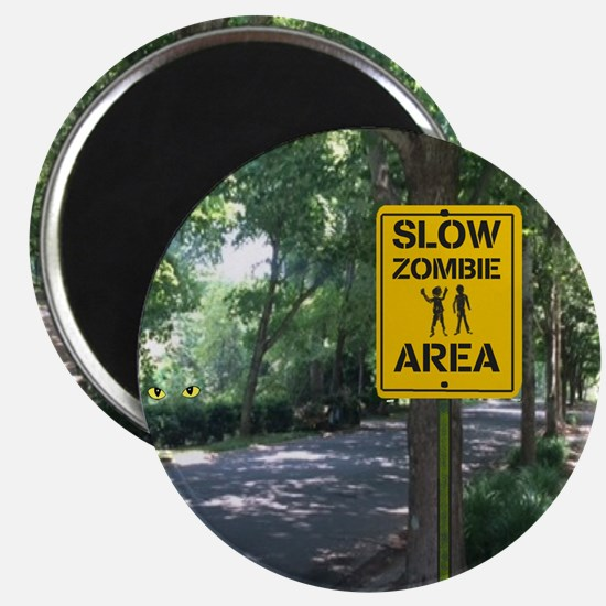 Slow Zombie Area Magnets