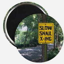 SLOW Snail X-ing Magnets