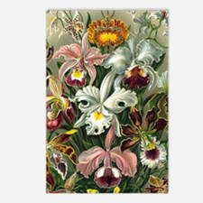 Unique Botanical Postcards (Package of 8)